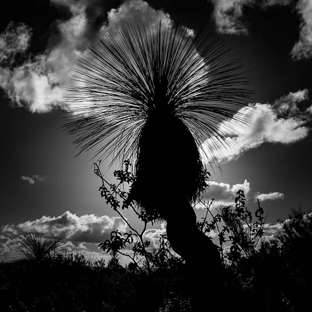 Portfolio - Photography - Lesmurdie, Perth, Western Australia
